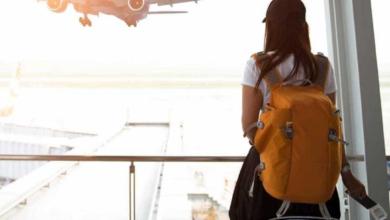 استعلام عن حجز برقم التذكرة مصر للطيران