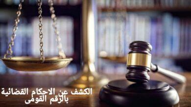 الكشف عن الاحكام القضائية بالرقم القومى