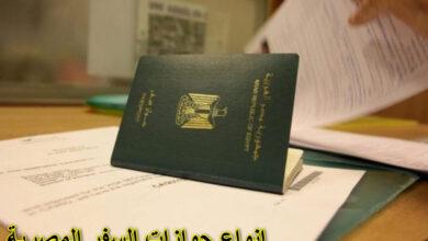 انواع جوازات السفر المصرية