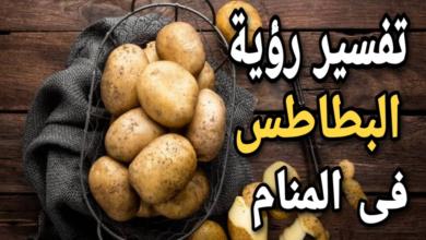 البطاطس في المنام
