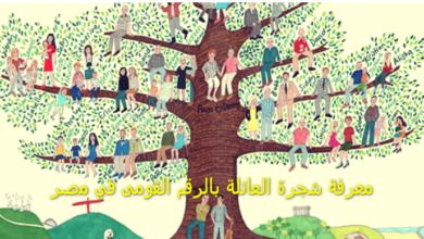 معرفة شجرة العائلة بالرقم القومى في مصر