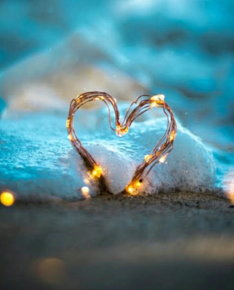 نور القلب