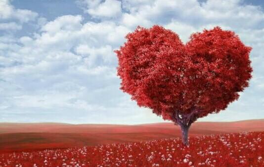 شجرة شكل قلب