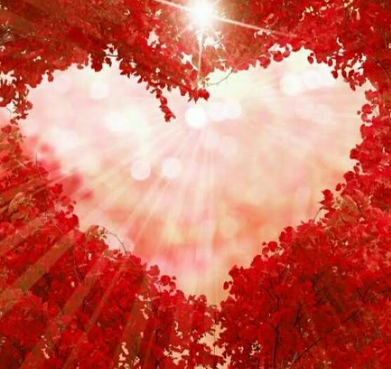 قلب في الطبيعة